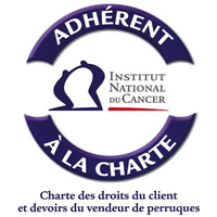 Logo Institut nationnal du cancer